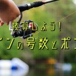 釣りのラインの号数・ポンド(lb)表記の見方と換算表